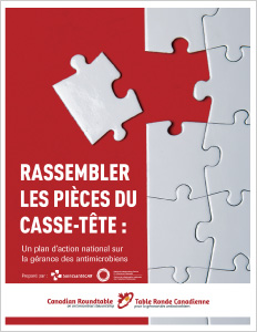 Puzzle_CoverFR
